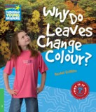 Why do leaves change colour? leve 3