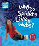 Why do spiders live inn webs?  level 4