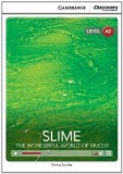 Slime the wonderful world of music
