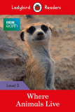 BBC Earth: Where Animals Live