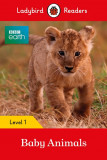 Ladybird Readers BBC Earth multi-copy Pack