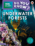 BBC Earth Do You Know? Underwater Forests