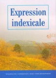 Expression indexicale